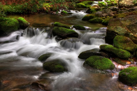 Close up of a fast moving stream going over mossy rocks photo