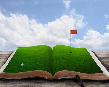 ゴルフ ・ ボールおよび開いた本でパッティング グリーンの旗