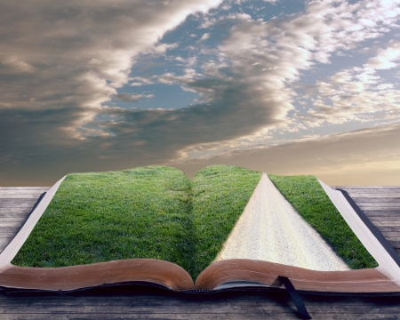 Open bible with grassy field and pathway Stock Photo
