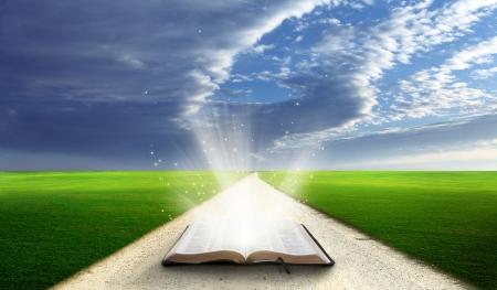 biblia: Abra la biblia en un campo con colinas cubiertas de hierba verde.