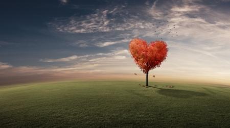 Heart shaped tree on grassy field photo