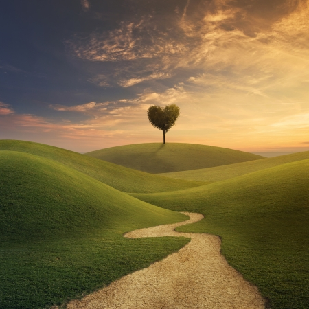 rolling hills: A tree in shape of a heart on a grassy hill