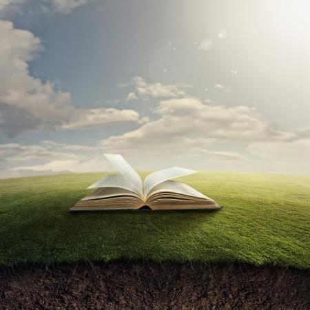 knowledge: Eine offene Bibel im Gras mit unterirdischen Wurzeln.