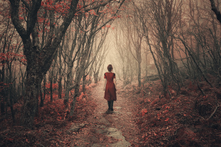 A woman in a dress dress walks through the foggy forest.