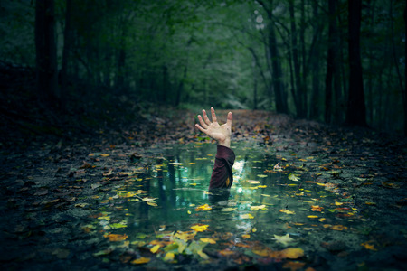 drown: A hand reaching out of a puddle in the forest.