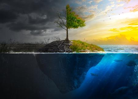toter baum: Leben und Tod auf einer schwimmenden Insel bei Sonnenuntergang. Lizenzfreie Bilder