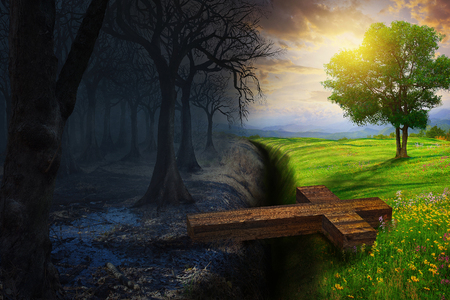 Een kruis overbrugt de kloof tussen een dood bos en een prachtige weide. Stockfoto