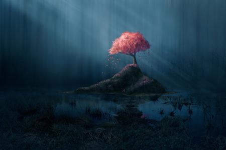 fleur de cerisier: Un arbre rose seule dans une forêt bleu foncé. Banque d'images