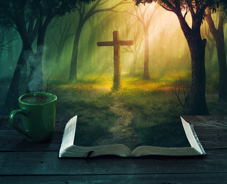 A beautiful forest scene with a cross from the pages of a Bible. Stock fotó