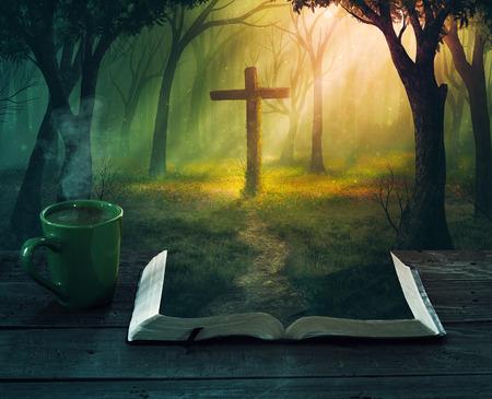 Una escena hermoso bosque con una cruz de las páginas de una Biblia.