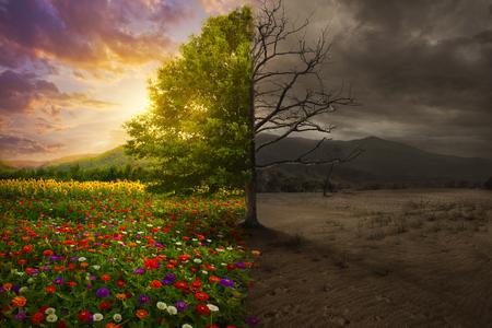 muerte: Hermoso colorido paisaje se transforma en desierto sin color.