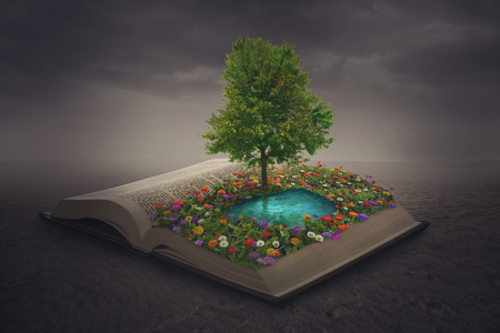 A beautiful flower and water oasis on top of a book