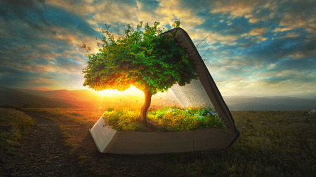A tree and garden grow out of the pages of the Bible Foto de archivo