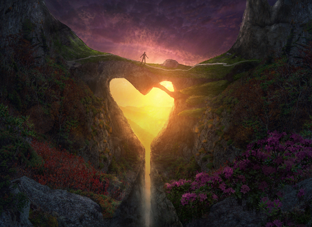 A heart shaped bridge across a canyon in the forest.