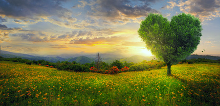 A heart shaped tree on a panoramic landscape.