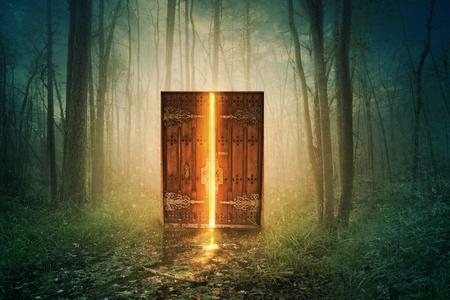 森の中で光るドア 写真素材