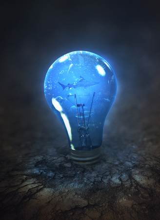 A glowing light bulb in dry ground with fish safely inside.