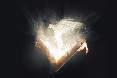 An open Bible reveals a bright glowing white dove
