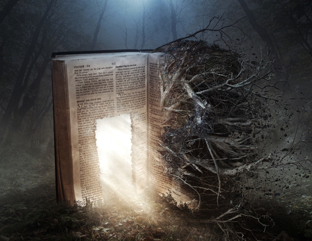 An open Bible with a glowing door and decaying roots