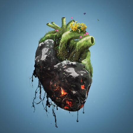 A human heart is covered with tar and death on one side and flowers and life on the other.