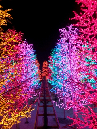 shiny: Ride through led lit trees Stock Photo