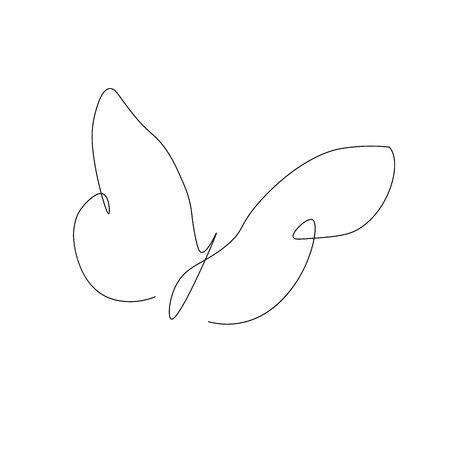 Butterfly isolated on white background vector illustration 向量圖像