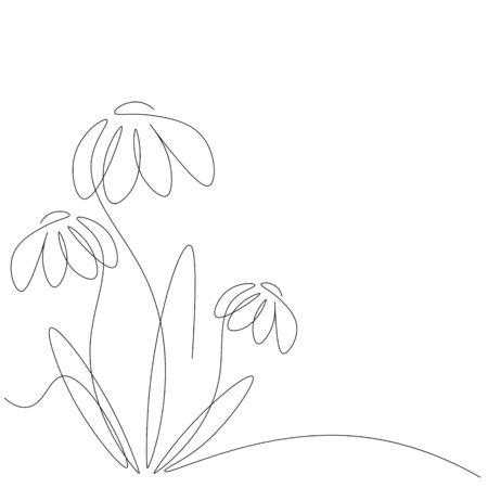 Flowers continuous line drawing contour, vector illustration