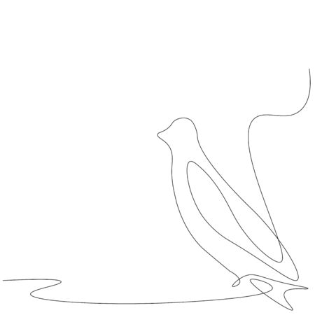 Bird animal background line drawing, vector illustration