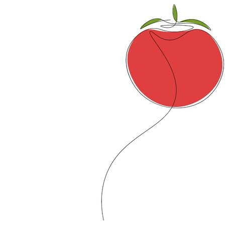 Tomato on white background, vector illustration