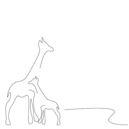 Giraffes on white background line drawing, vector illustration  イラスト・ベクター素材