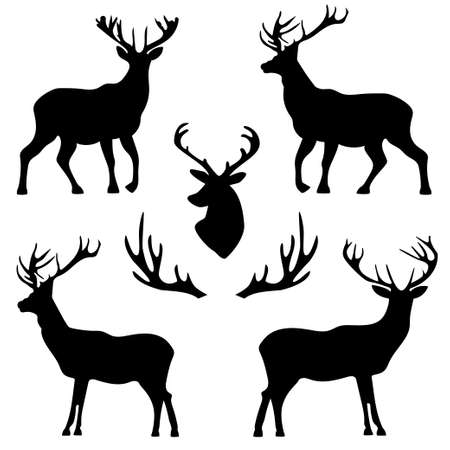 background with patterns of deer and horns