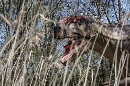 t rex: Eng geïsoleerd dino dinosaurussen T rex