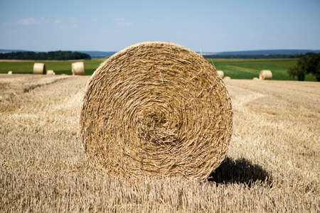 agrar: nature hay roll field in bavaria germany