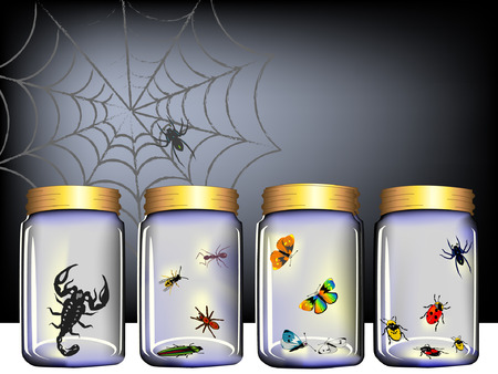insect jar Vector