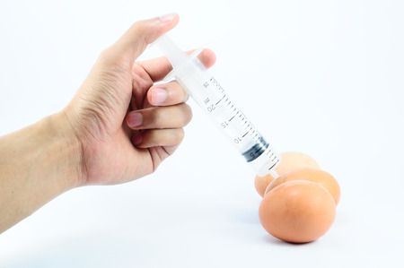 swine flu vaccination: Chicken egg with syringe injection