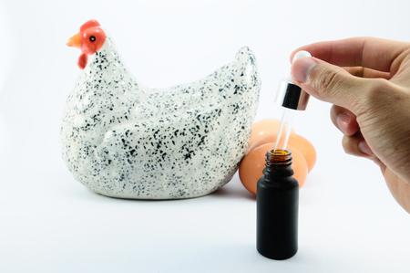 origen animal: Pollo y huevo obtener una inmunización Foto de archivo