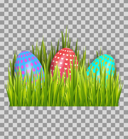 Decorated Easter eggs in green grass isolated on transparent background. Decoration elements design. Vector illustration