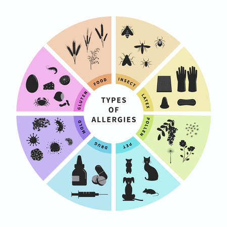 Types of allergies infographics design vector illustration. Animal hair, latex, drugs, insect, food, gluten, pollen allergy. Banner template with different allergen symbols