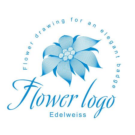 エーデルワイスは、ロゴ、オープン エーデルワイス花、スイレン、ハスまたは他の抽象的な小花のシンボルとエレガントなコーポレートアイデンテ  イラスト・ベクター素材