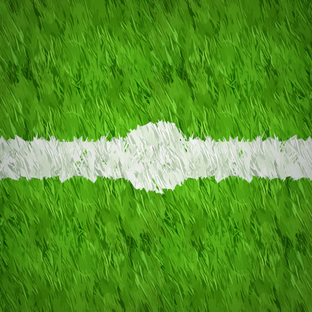 formal garden: center top view soccer grass design with white line spot pointer