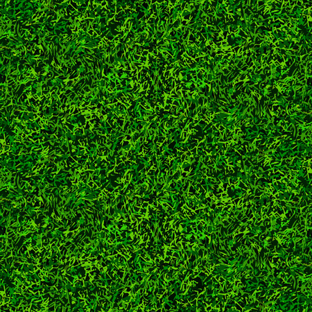 top view green soccer grass texture background Vector
