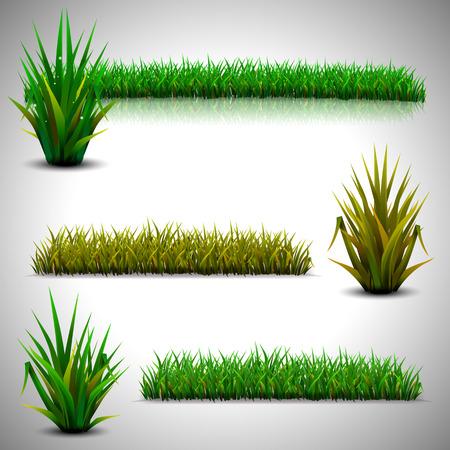 Green grass isolated on gray background Ilustração