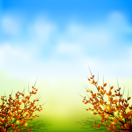 Autumn tree and leaf with sky background