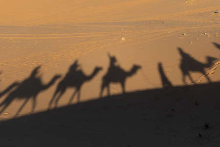 Shadows of camel riders in the late afternoon in the Saharan desert in Morocco Banco de Imagens