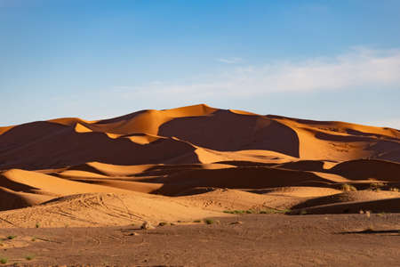 Sahara sand dunes in late afternoon sun at sunset with long shadows and texture Banco de Imagens