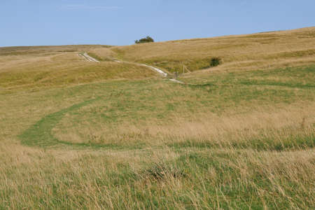 Curved grasslands seen from above at sunset from White Horse Hill Uffington Stock Photo
