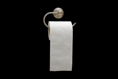 Toilet paper roll on holder