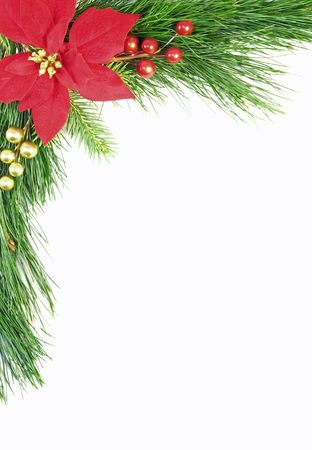 Evergreen Christmas border or background with poinsettia and berries