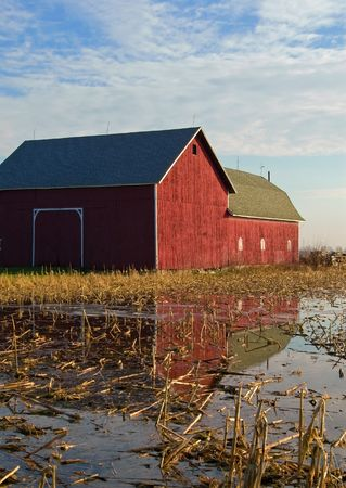 Reflection of a red barn in a field photo