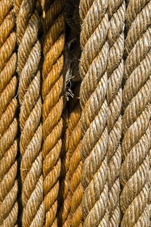 Assorted ropes hanging vertically Stock Photo - 3010752